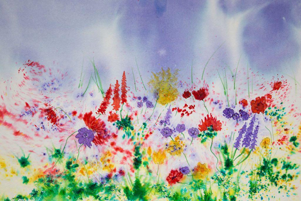Original Brusho paintings of Wild flowers of the Hebridean Machair