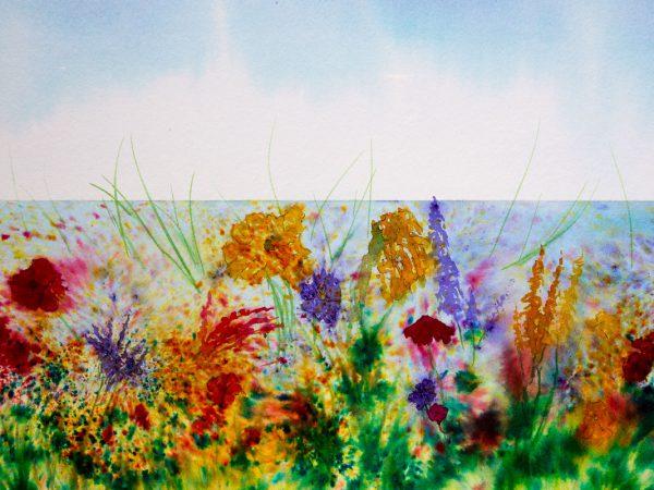 Flowers of The Hebridean Machair