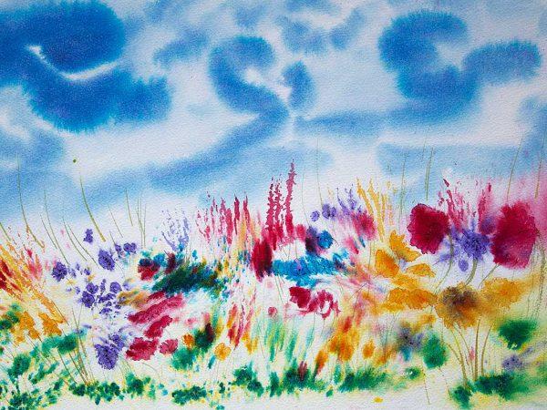 Hebridean Machair Flowers